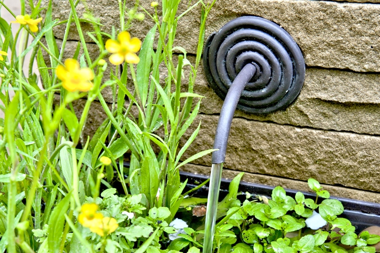 Water feature designed by Adam Frost