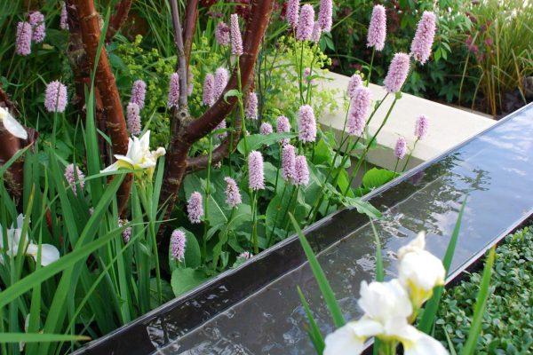 adam-frost-chelsea-2008-garden-rill