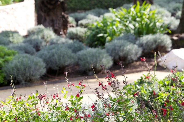 adam-frost-design-garden-france