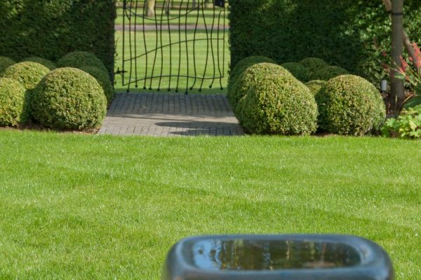 adam-frost-garden-rutland-gate