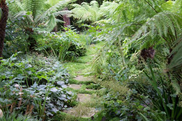 adam-frost-norfolk-garden-05