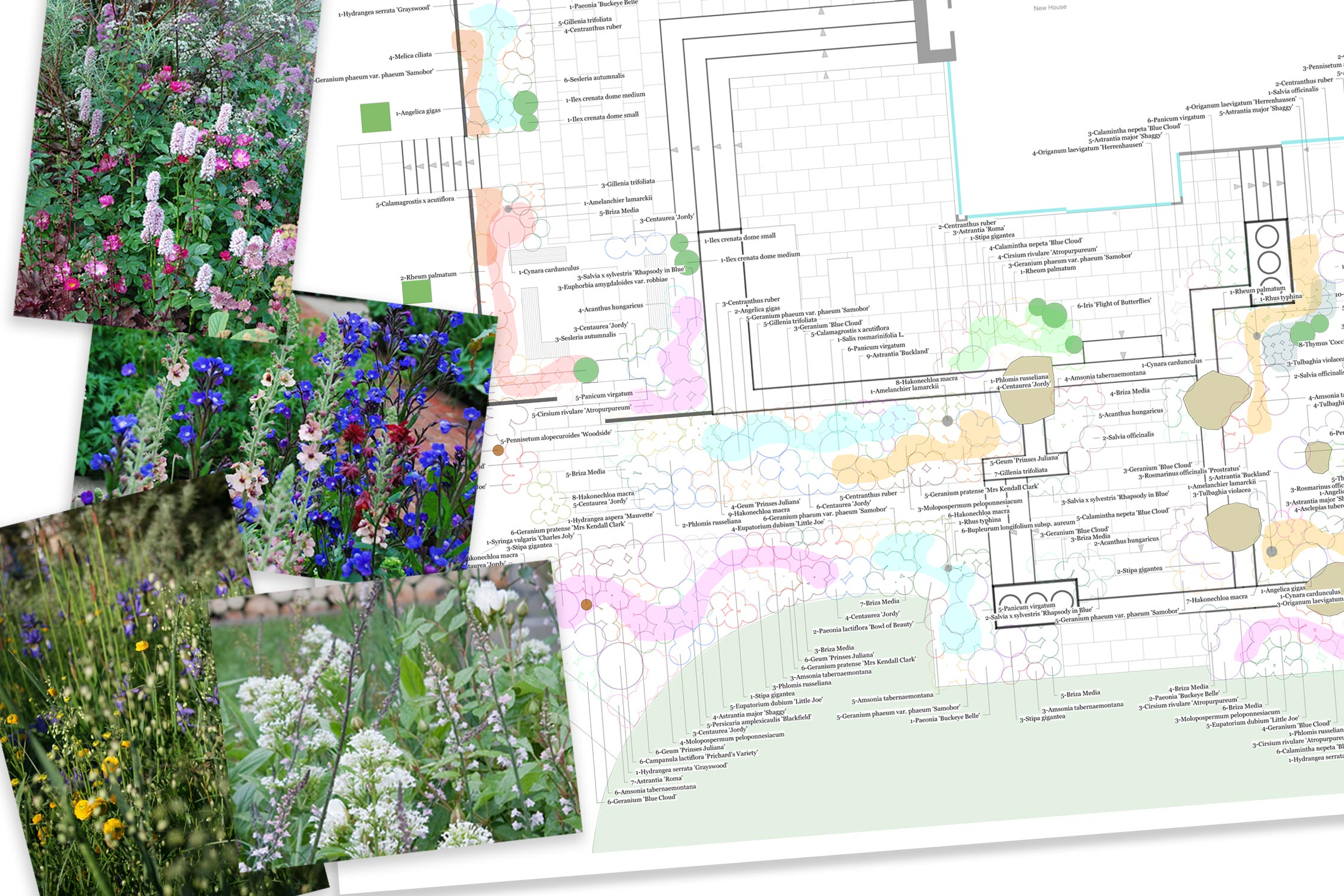 Planting plans created by Adam Frost and his Team