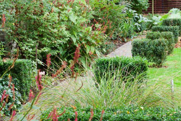 marianne-majerus-adam-frost-garden-london-1