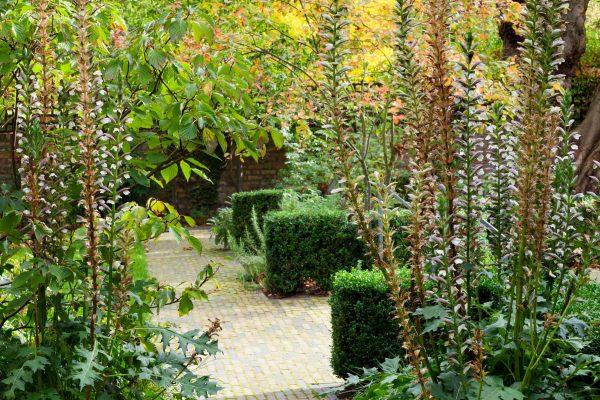 marianne-majerus-adam-frost-garden-london-3